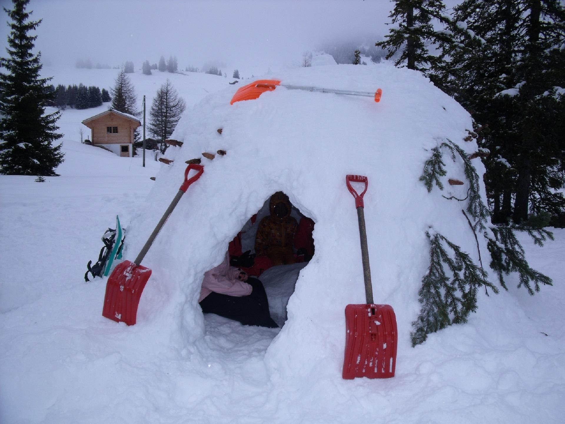 Survie dans la montagne enneigée